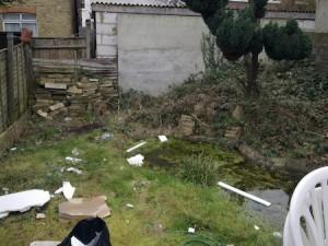 untidy garden.